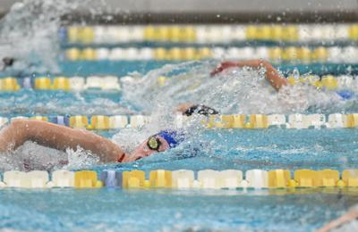2019 Williamson County Swimming Championships (copy)