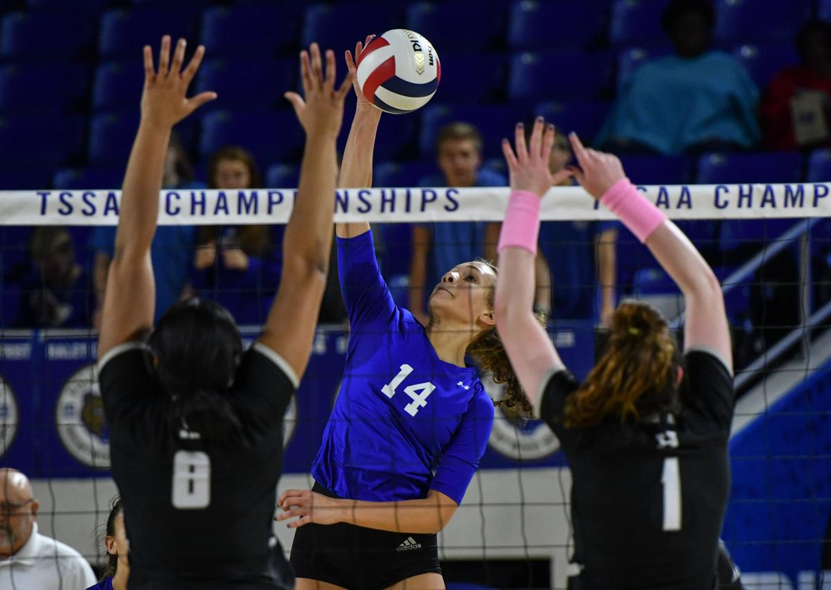 2019 Championship Volleyball – Brentwood vs. Houston, Class AAA