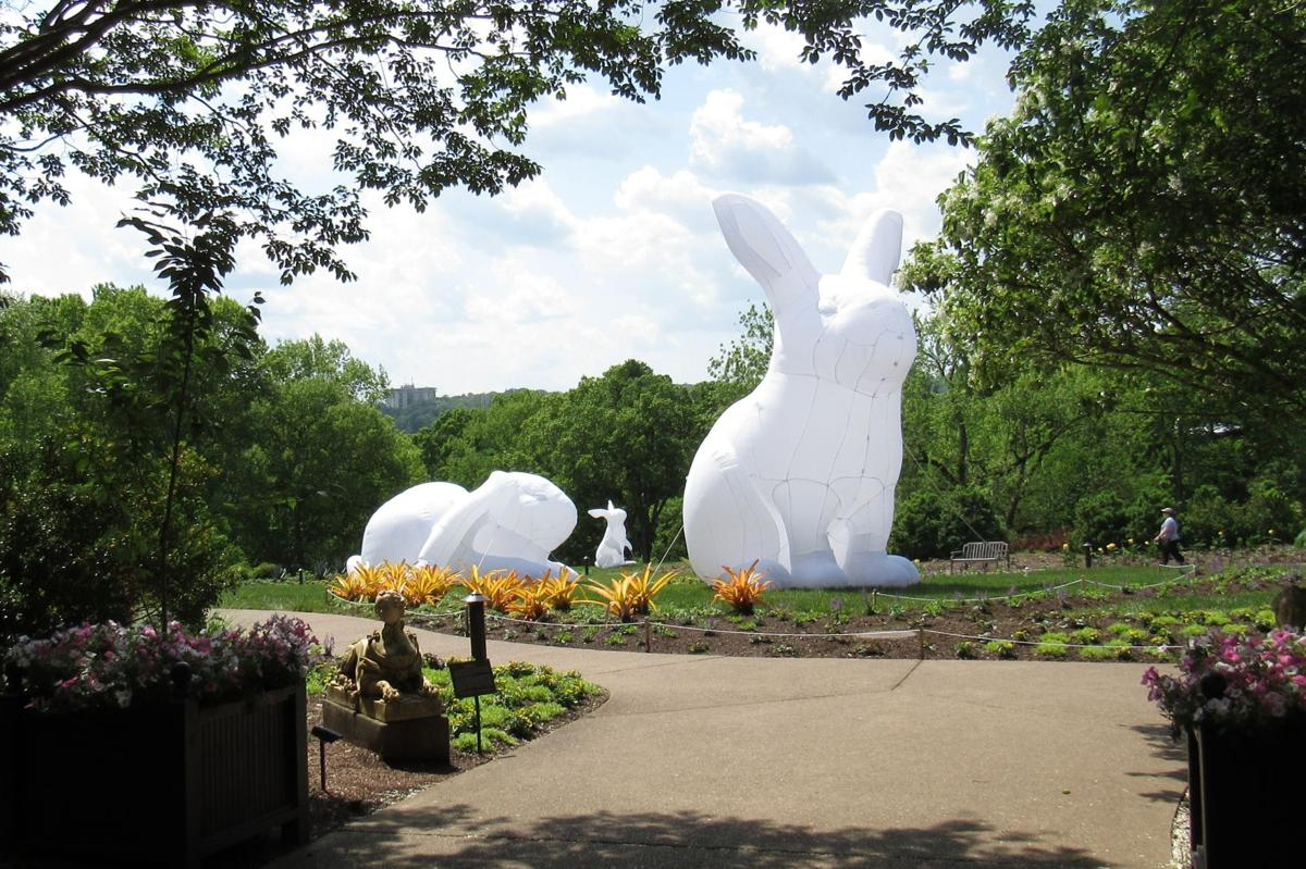 Commentary Cheekwood S Botanical Gardens Has Bunnies Really