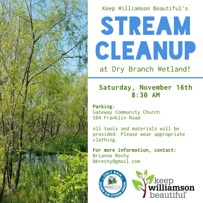 Dry Branch Wetland cleanup