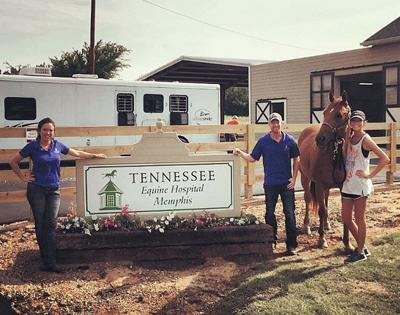 Tennessee Equine Hospital opens Memphis satellite clinic
