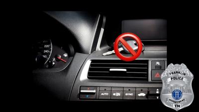 FPD auto theft