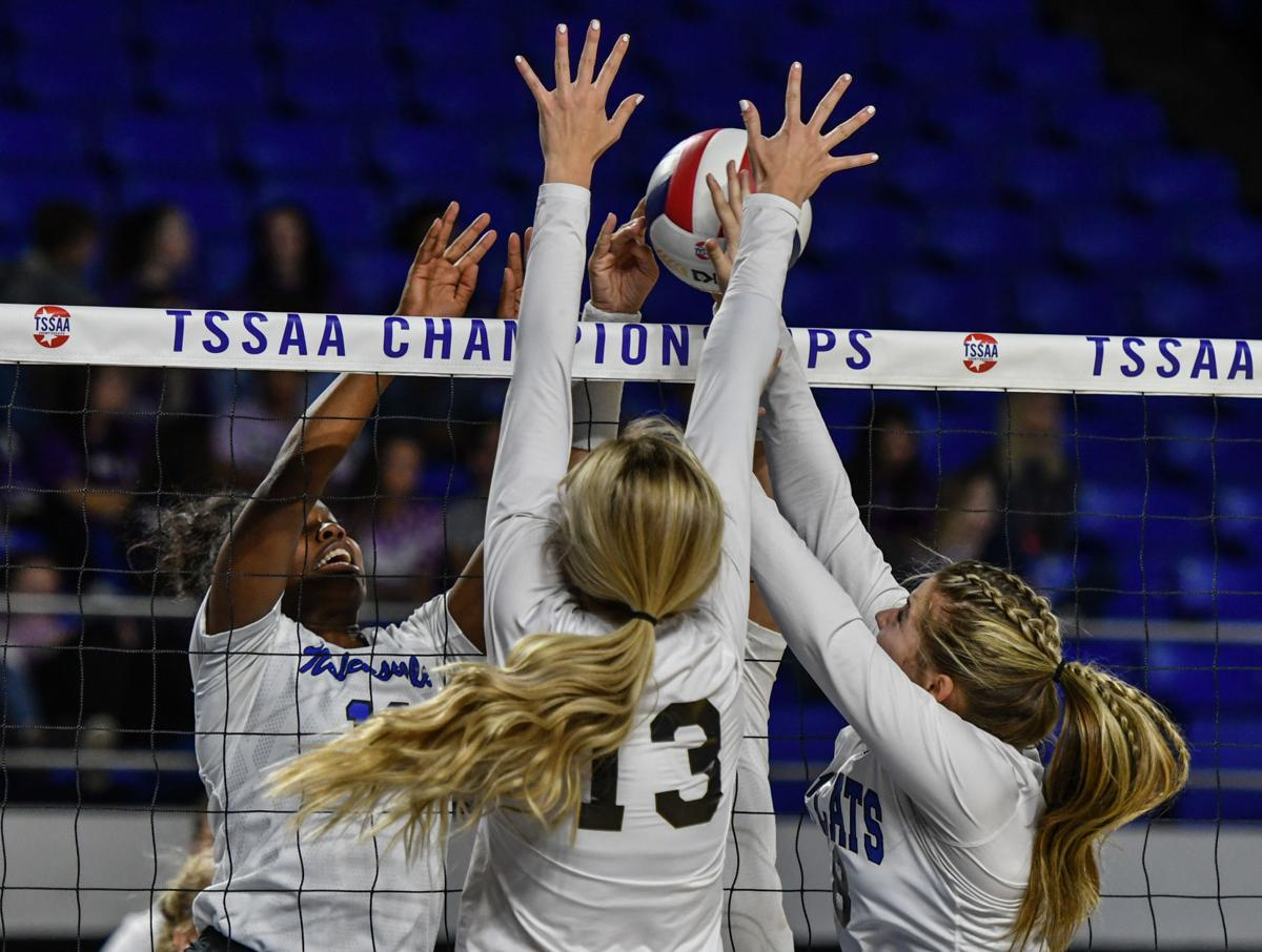 State Volleyball – Nolensville vs. Livingston Academy