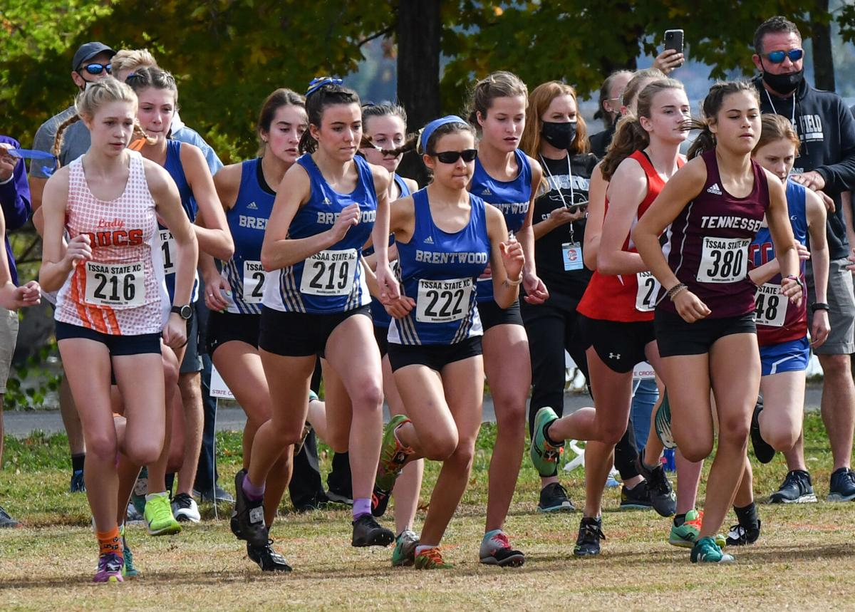 State Cross Country – Division I Large Schools