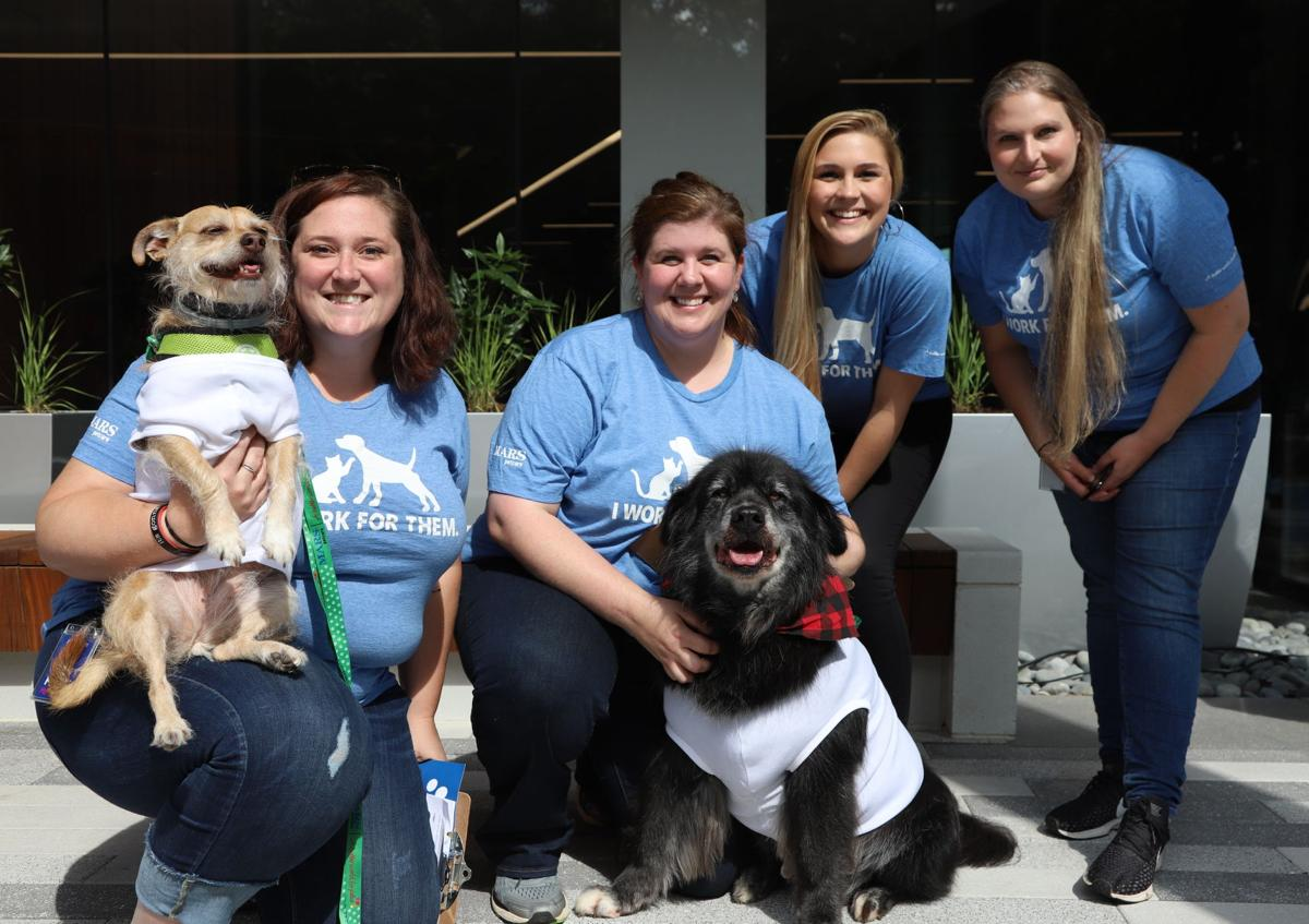 Mars Petcare unleashes new pet-friendly headquarters in Cool