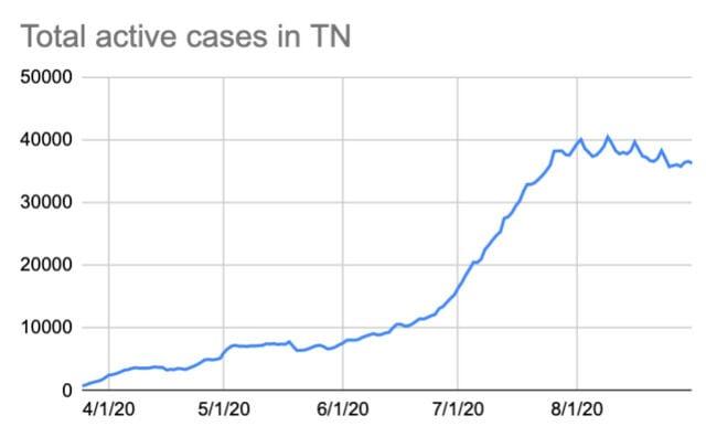 Cases 8-31