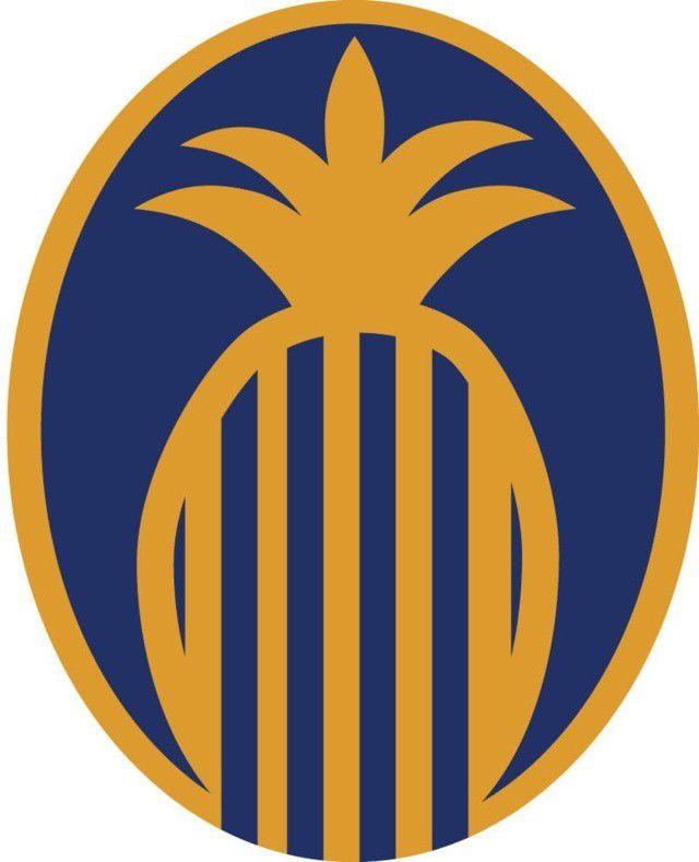 franklin-synergy-logo