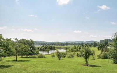 Carters Creek Property