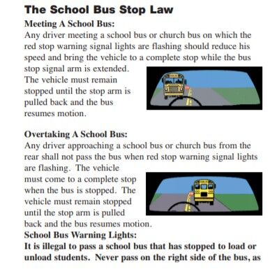Tennessee Drivers Manual School Bus 1