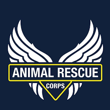 ONLINE ONLY - Animal rescue
