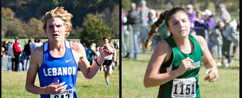 X-country collage