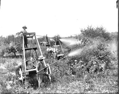 Out of the Past apple spraying