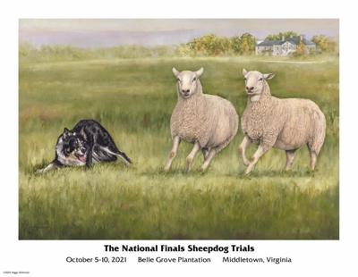 2021 National Sheepdog Finals Poster with art by Peggy Wilkinson.jpg