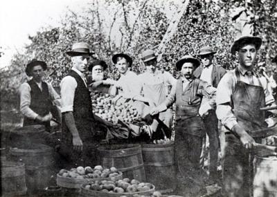 Out of the past apple pickers