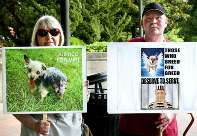 Dog Abuse Trial