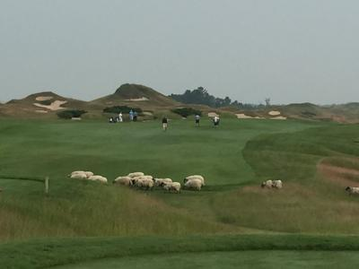 Despite agronomy options for another PGA Championship being