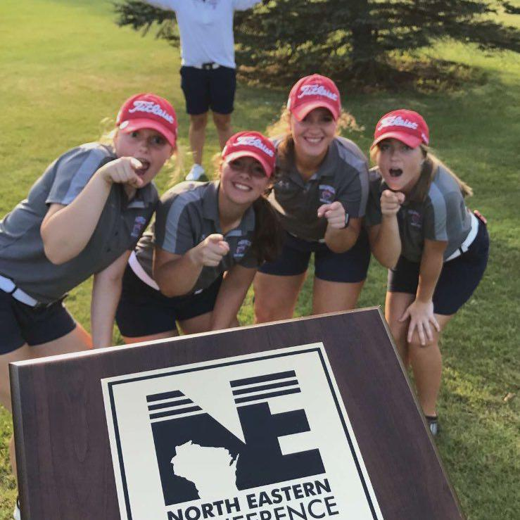 HS Girls Golf: Fox Valley Lutheran's Erika Priebe repeats as North Eastern champion; Waupaca catches Foxes to share overall title