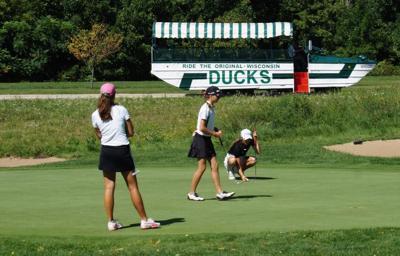 Golf, Ducks