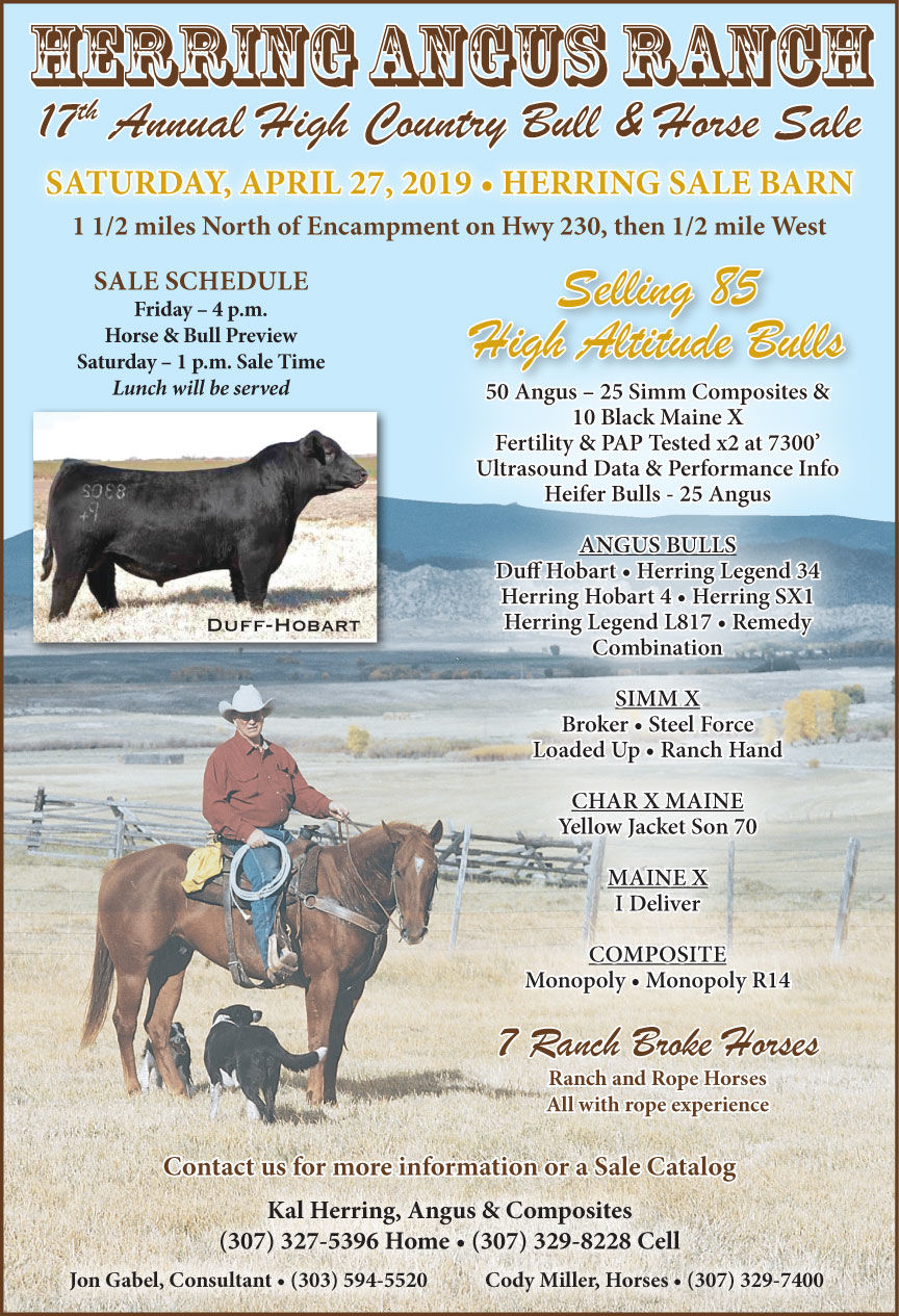 Herring Angus Ranch 17th Annual High Country Bull & Horse Sale