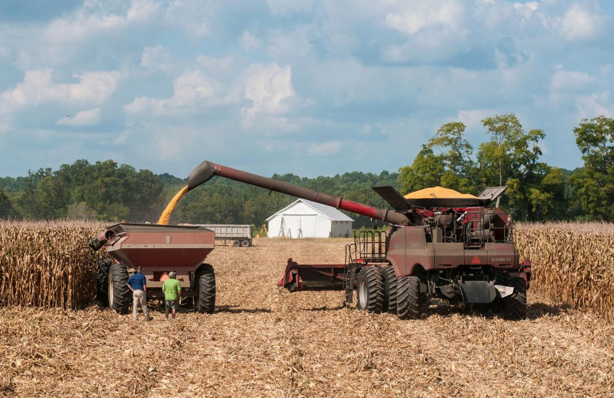 How to determine if you're a farmer for tax purposes