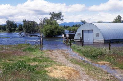 Flooded Farm generic