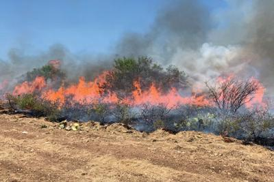 Prescribed burning: We need to do it more often