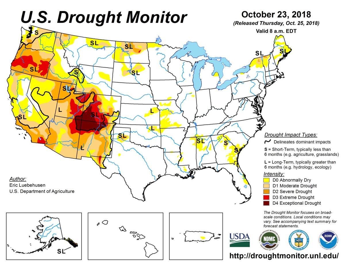 Mild weather predicted for much of U.S. - drought outlook