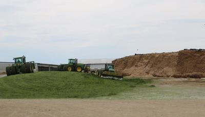 Harvesting silage during a wet year