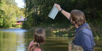Long-term ag change impacts stream water quality
