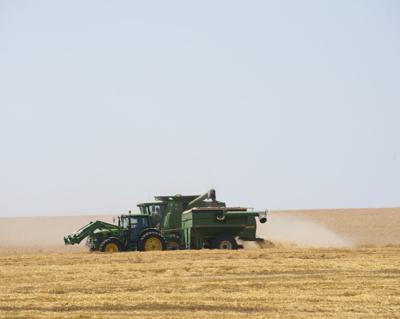 Farm size not always a true gauge of profitability
