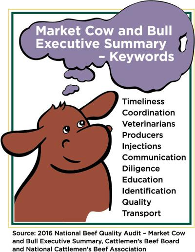 BeefTalk: Add value to market cows and bulls