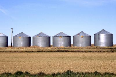 Guest opinion: To advance agriculture, we must break down silos