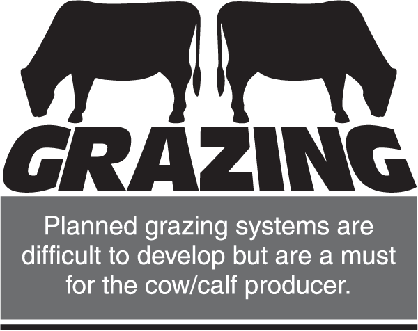How many cattle should go in the pasture?