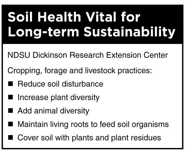BeefTalk: Healthy soil buffers human inadequacies - 2