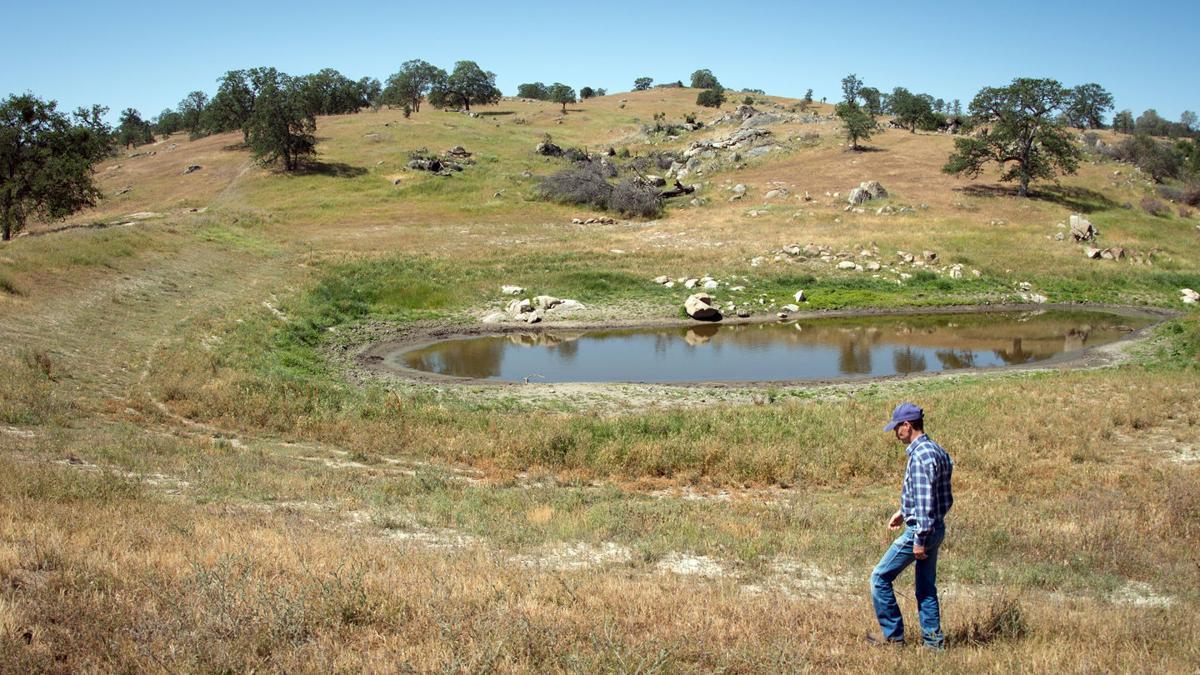 Idaho stockwater ownership bill advances