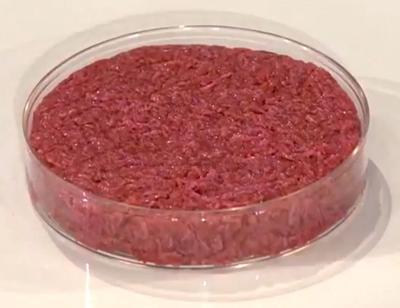 fake meat generic