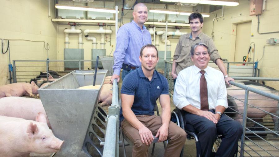Husker researchers develop livestock-monitoring technology - 2