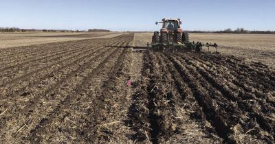 Guest opinion: The truth on conservation tillage