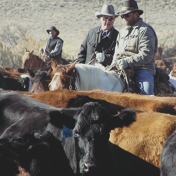 Program looks to promote Wyoming ag products