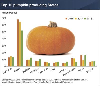 Most U.S. pumpkins produced in 10 states