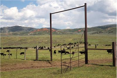 Intermountain West holds ranching opportunities