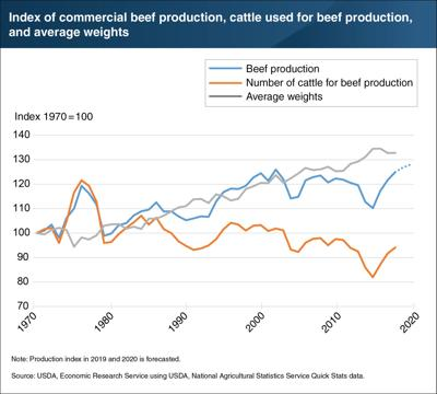 U.S. beef growth fueled by weights