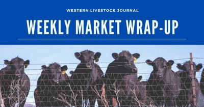 Facebook- Weekly markets