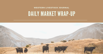 Daily markets image