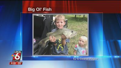 11/11 Big Ol' Fish