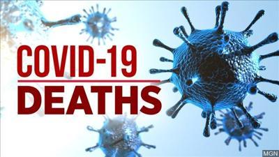 COVID-19 deaths MGN
