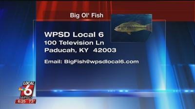 8/13 Big Ol' Fish