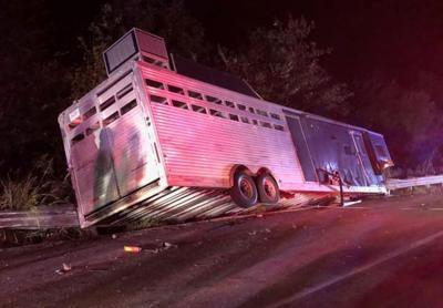 Horse trailer crash Fulton County KY