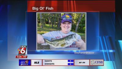 7/25 Big Ol' Fish