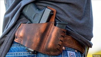 concealed handgun